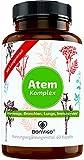 BonVigo® Atem Kapseln mit Lungenkraut - Verbesserte Rezeptur: Mikronährstoffe für Atemwege, Bronchien, Lunge, Immunsystem, Zellschutz* - 11-Pflanzen-Komplex mit Eukalyptusöl, Salbei, Isländisch Moos