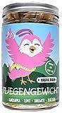 Fliegengewicht - Malima Berlin - Fburn - Diätkapsel - Pflanzlich - Vitamine - Heißhungerstopp - Natürlich - 180 Kapseln (hochdosiert) für 1 ganzen Monat
