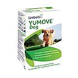 Lintbells | YuMOVE ausgewachsener Hund | Hüft- und Gelenkergänzung für steife ausgewachsene Hunde, mit Glucosamin, Chondroitin, Grünlippmuschel | 6 bis 8 Jahre | 60 Tabletten