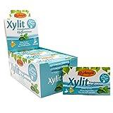 Birkengold Xylit Kaugummi Pfefferminze   24 Stk. Blister   Zahnpflege-Kaugummi   zuckerfrei   hoher Xylit-Anteil von 70 %   vegan   ohne Titandioxid   ohne Aspartam
