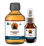 Vitalpfoten Kolloidales Silber 25ppm 200 ml Medizinglas Flasche + gratis leere Sprühflasche für Hunde, Katzen, Haustiere, höchste Reinheit und Qualität durch Elektrolyse Herstellung in Deutschland