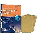 WILD+ Schmerzlinderung Patch, Wärmepflaster Rücken Schmerzpflaster Fördern die Durchblutung, Schmerzlinderung Pflaster für Rücken/Nacken/Schulter/Knie/Muskelgelenksch merzen-12 Stück