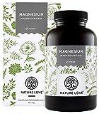 NATURE LOVE® Magnesium – 660mg (400mg elementar) je Kapsel - 365 Kapseln (Jahresvorrat) - Höher konzentriert als Magnesiumcitrat - Laborgeprüft, hochdosiert, vegan, in Deutschland produziert