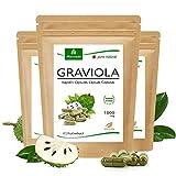 MoriVeda® Graviola Kapseln aus Fruchtextrakt 4:1   6 Monatspackung   1800mg pro Kapsel I Graviola Kapseln, reich an Vitaminen & Antioxidantien I Graviola in erstklassiger Qualität   360 Stk