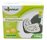 Guanabana / Graviola (Stachelannone) – Fruchtpüree, 3x1kg Box (10 x 100g per box)
