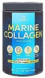 Q HONEY Marine Kollagen pulver . Collagen Pulver mit Vitamin c und Hyaluron . Kollagen Hydrolysat Peptide 400 g, Pulver Geschmacksneutral