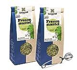 Sonnentor: 100% bio Frauenmantel Tee lose, 2er Pack Kräutertee (80 g) + Teezange I AT-BIO-301