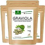 MoriVeda® Graviola Kapseln aus Fruchtextrakt 4:1 | 6 Monatspackung | 1800mg pro Kapsel I Graviola Kapseln, reich an Vitaminen & Antioxidantien I Graviola in erstklassiger Qualität | 360 Stk