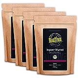 Ingwerpulver Bio 1kg - Ingwer - Ingwerwurzel gemahlen - z.B. für Ingwertee und Ingwerwasser - Abgefüllt und kontrolliert in Deutschland