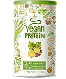 Vegan Protein - HASELNUSS - Pflanzliches Proteinpulver aus Reis, Lupinen, Erbsen, Chia-Samen, Leinsamen, Amaranth, Sonnenblumen- und Kürbiskernen - 600 Gramm Pulver