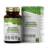 Ezyleaf Bacopa Monnieri Kapseln   120 Vegane Kapseln Hohe Festigkeit   Brahmi-Extrakt   Ohne GVO, Gluten & Milch   Hergestellt ISO-zertifizierten Betrieben in GB