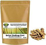 Baikal-Helmkraut Wurzel Baikal Skullcap Root Scutellaria baicalensis Шлемник байкальский Wild geerntete Bio-Kräuter aus Sibirien, Russland. (60 gramm)