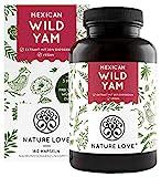NATURE LOVE® Wild Yam Kapseln - Original Mexican Wild Yamswurzel - Hochdosiert mit 880mg Extrakt (davon 176mg Diosgenin) je Tagesdosis - 180 vegane Kapseln
