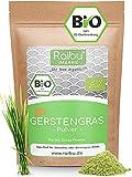 RAIBU® Gerstengras Pulver BIO 500g I Geprüfte BIO-Qualität & abgefüllt in Deutschland I Gerstengras Pulver Rückstandskontrolliert & Rohkost-Qualität I Aus kontrolliertem EU-Anbau