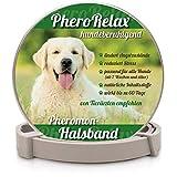 PheroRelax beruhigendes Halsband für Hunde I Natürliches Beruhigungsmittel für Hunde mit Pheromonen bei Angst, Stress und Aggressivität I 60Tage Wirkzeit I Hundehalsband für Welpen/Erwachsene