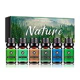 YJYQ 6X Ätherische Öle Set - Duftöle Naturrein für Diffuser - Aromatherapie Aroma Öl Geschenkset für Luftbefeuchter - Essential Oils für Massage Kerzen Seife