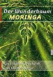 Der Wunderbaum Moringa: Ein Vitamingeschenk von Mutter Natur