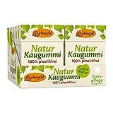 Plastikfreier Natur Kaugummi Grüne Minze   12 Stk.  Natürliche Kaumasse (Chicle)   Zahnpflegend (Xylit)   Zuckerfrei   Umweltfreundlich   Birkengold