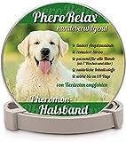Dhohoo Halsband für Hunde I Natürliches Beruhigungsmittel für Hunde mit Pheromonen bei Angst, Stress und Aggressivität I 60Tage Wirkzeit I Welpen und Erwachsene Hunde