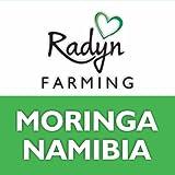 Moringa Namibia