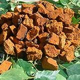 Chaga Pilz Chunks Getrocknet 450g. gehackt bis zu 5 cm.