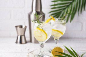 gz gin tonic gegen pollenallergie 344287795